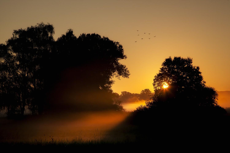 Neeracher Ried Sonnenaufgang